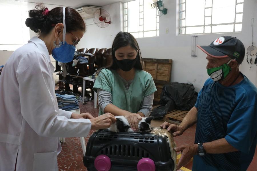 Pets podem ser vacinados na Vila Criativa do Mercado até esta quarta-feira (28)   Santa Portal