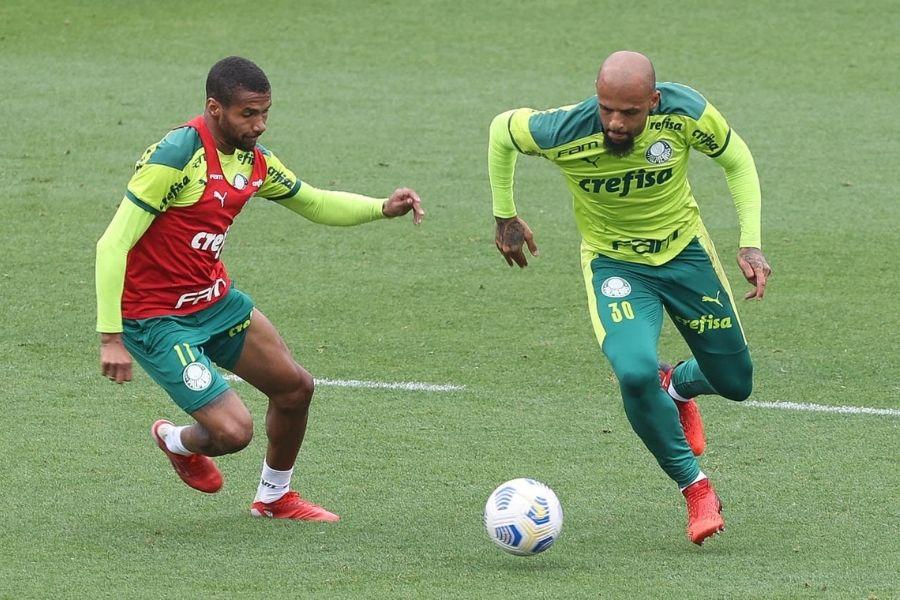 Palmeiras encara a Chapecoense e tenta se reencontrar no Brasileiro | Santa Portal