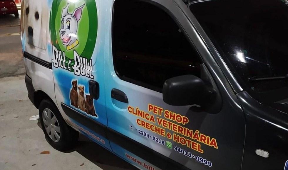 Polícia recupera cães roubados de pet shop de São Paulo | Santa Portal